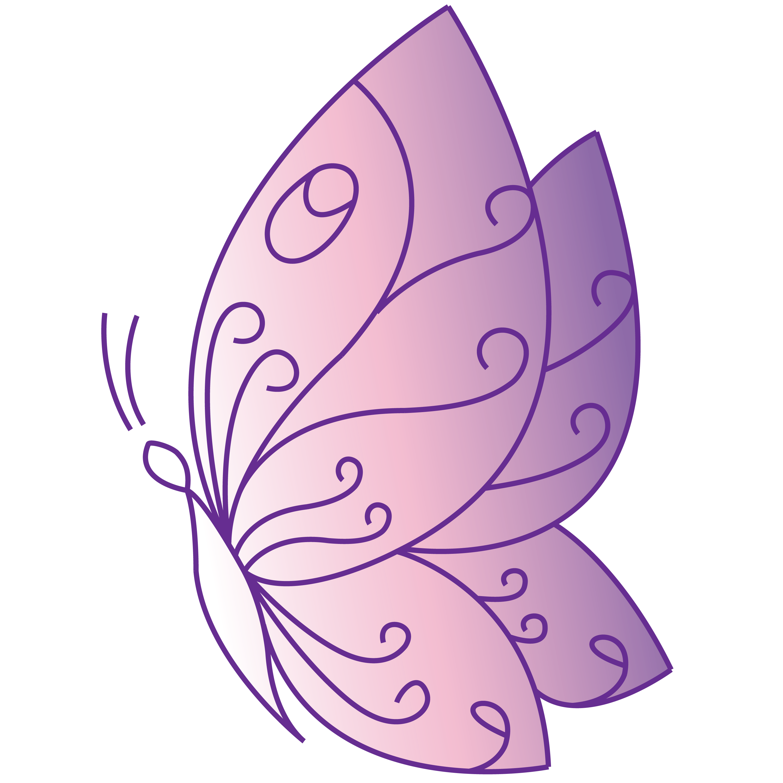 beautify_schmetterling
